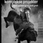 Anmeldelse af Ledelse af komplekse projekter